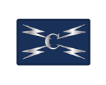 Cyber Specialist Silver Badge